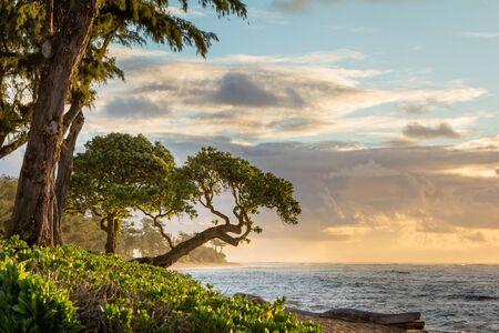 Sunrise in Kauai, Hawaii