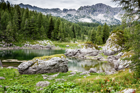 julian: Mountain valley with green trees and lake in Julian alps, Slovenia