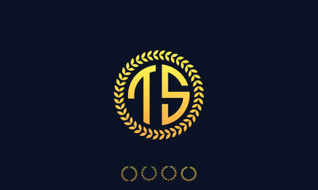 Organization Rounded Initial Letters TS logo. Vector illustration