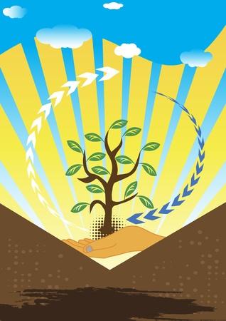 verdant: Afforestation