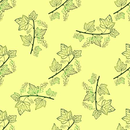 tender: Tender currant seamless pattern. Vector currant background. Seamless pattern with contour hand draw graphic currantberries. Vector berries template.