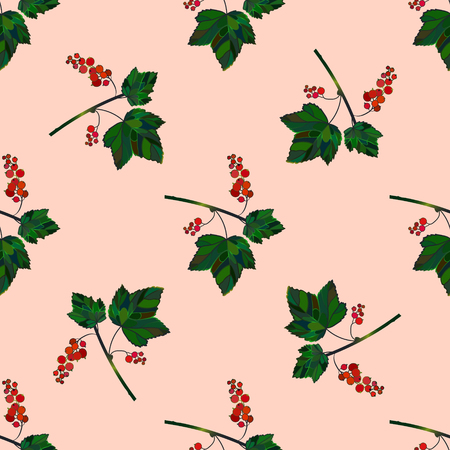 currant: Colored currant seamless pattern. Vector currant background. Seamless pattern with colored hand draw graphic currantberries. Vector red berries template. Illustration