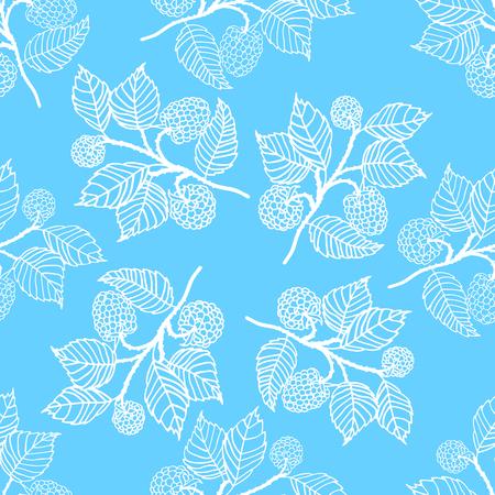 blackberries: Tender seamless pattern with blackberries. Blue vector backgroung. Illustration