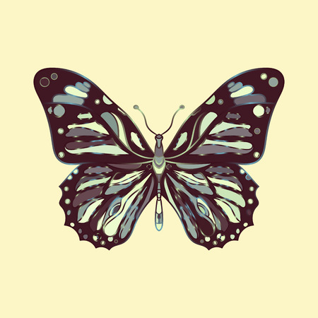 butterfly isolated: Isolated vector butterfly in tribalstyle. Color illustration.