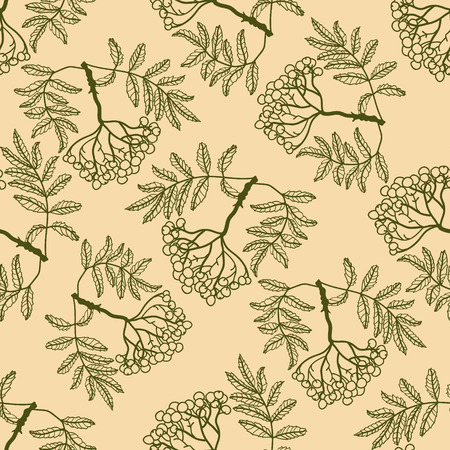 leaf cutter: Rowan seamless vector pattern. Beige seamless vector pattern with rowan.
