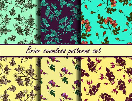 eglantine: Briar seamless vector patterns set. Collection of color seamless vector patterns with eglantine.