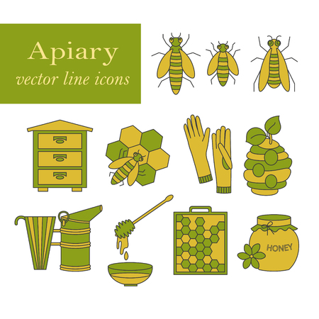 apiary: Apiary vector colored thin line icons set. Sweet honey, natural honeycomb, beehive, wax, honeycomb, and other apiary equipment signs.