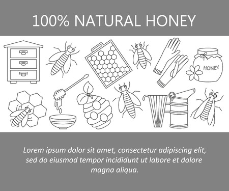 honeyed: Honey vector card with thin line icons - sweet honey, natural honeycomb, beehive, wax, honeycomb, and other apiary equipment signs.