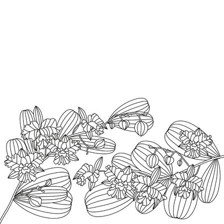 Tarjeta Con Flor Tropical - Orquídea. Puede Ser Utilizado Para La ...