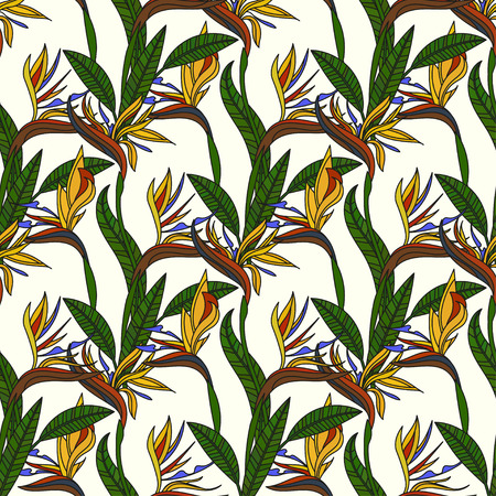 strelitzia: Pattern with strelitzia flowers. Illustration