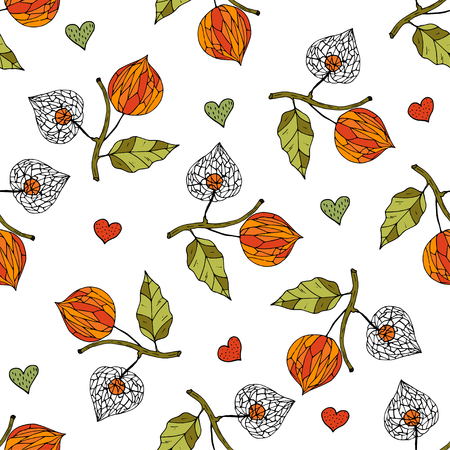 Seamless autumn vector pattern with physalis.