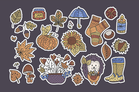 Big autumn icon set.