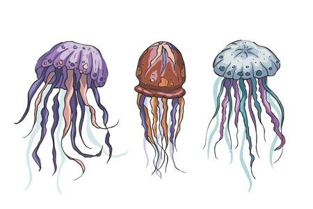 Conjunto de vectores de medusas. Colección de vectores de animales marinos. Animales tropicales dibujados a mano marinos. Perfecto para pront y web. Ilustración de vector