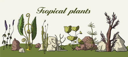 Prehistoric vector plants. Differenr extinct greenery. Cartoon botanical set. Tropic nature card.