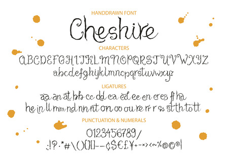 Decorative script font. Alphabet calligraphy signs. Letter vector set. Hand drawn typography typeset.
