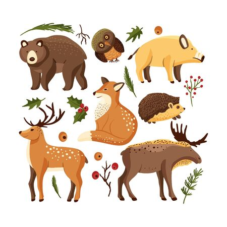 Hand drawn forest animal vector set in a flat style. Woodland cartoon sticker icon funny collection with owl, deer and moose, big brown bear, boar hog and a red, fox.