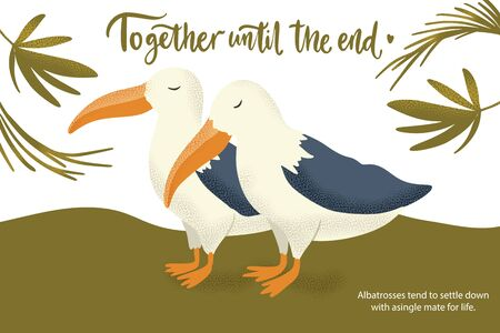 Happy valentine day vector textured albatross bird animal card in a flat style with quote and real facts about love. Romantic illustration. Together until the end.