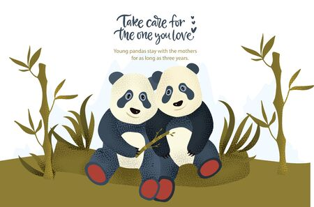 Happy valentine day vector textured panda bear animal card in a flat style with quote and real facts about love. Romantic illustration with cute pandas. Take care for the one you love.