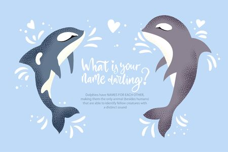 Happy valentine day vector textured dolphin animal card in a flat style with quote and real facts about love. Romantic killer whale couple illustration.
