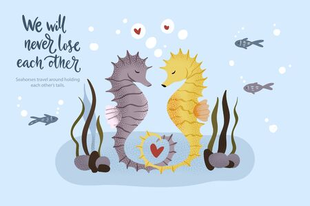 Happy valentine day vector textured seahorse animal card in a flat style with quote and real facts about love. Romantic illustration. Seahorses swim and hold on to their tails. We will never loose each other. Ilustração