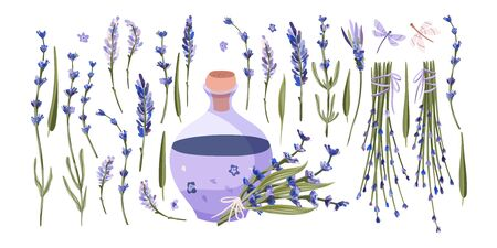 Provence floral vector set. Big hand drawn collection with aromatic lavender flower bouquet and oil in a flat style.