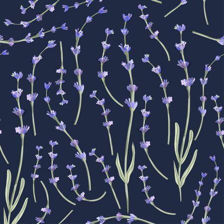 Lavender blossom flower summer art on a blue