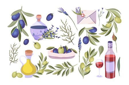 Olive, wine and lavender plant isolated vector set. Mediterranean and Provence organic nature and oil flat collection. Food and flowers icon symbols.
