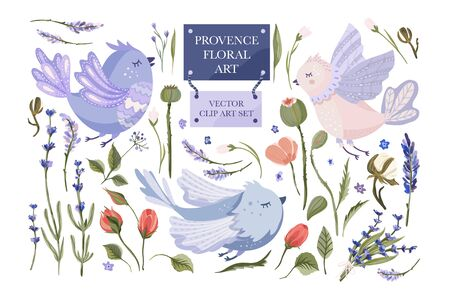 Provence floral vector set. Big flat collection with cute hand drawn bird, rose, poppy and lavender with other field plant elements. Animal and flowers.