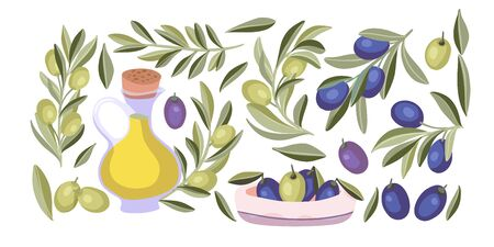 Olive plant isolated vector food set. Mediterranean organic nature and oil flat collection with green and black olives.