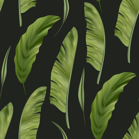 Realistic colorful tropical banana palm leaves vector seamless pattern. Jungle botanical summer background. Exotic green nature wallpaper.