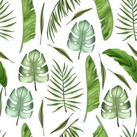 Realistic colorful tropical palm banana leaves and monstera vector seamless pattern. Jungle botanical summer background. Exotic green nature wallpaper.
