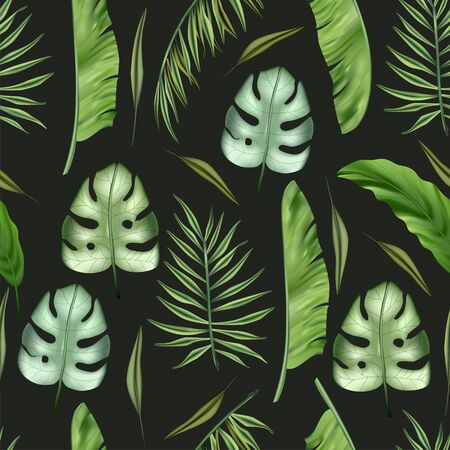 Realistic colorful monstera tropical palm leaves vector seamless pattern. Jungle botanical summer background. Exotic green nature wallpaper.