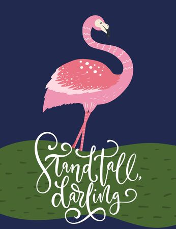 Stand tall, darling. Pink flamingo bird vector card. Tropical cute summer poster with hand drawn lettering quote and cartoon kid illustration.