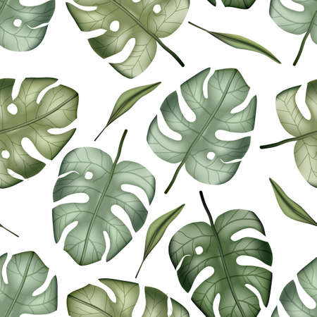 Realistic colorful tropical palm monstera leaves vector seamless pattern. Jungle botanical summer background. Exotic green nature wallpaper. 向量圖像