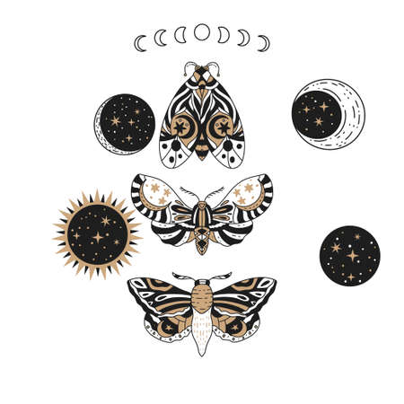 Boho butterfly, sun and moon vector set. Beautiful moth vector magic ornament, celestial element illustration.