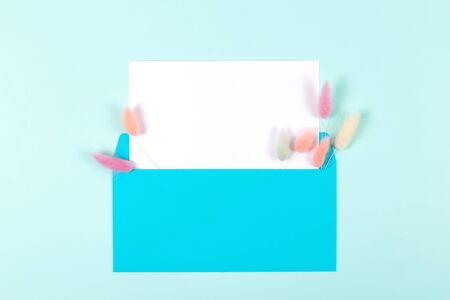 Blue envelope with blank card decorated with colourful fluffy spikelets on pastel blue background. Flat lay style. Mock-up. Greeting concept Banco de Imagens