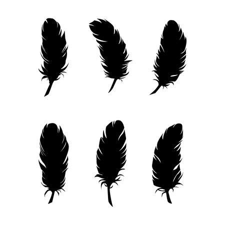 Feathers for design and decoration Stock Vector - 19732195