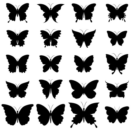 Set of butterflies for design. A vector illustration Vector