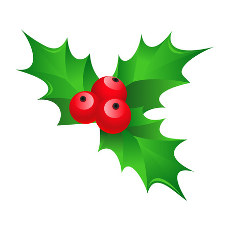 Cartoon shiny Christmas mistletoe decorative red and green ornament  Vector  Vector