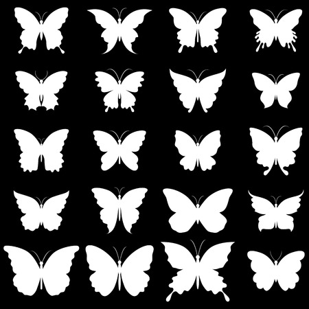black butterfly: Set of butterflies for design  A vector illustration