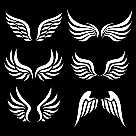 angel white: wings set. Vector. Illustration