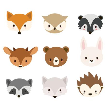 動物: 可愛的林地動物集合。動物頭隔絕在白色背景。 向量圖像