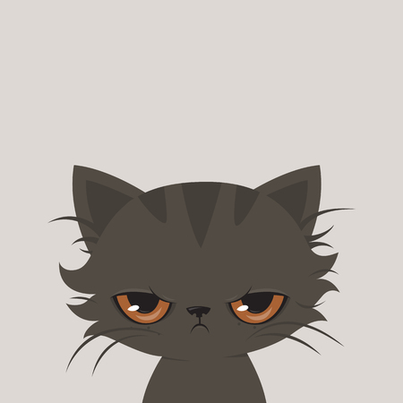 grey cat: Angry cat cartoon. Cute grumpy cat, illustration. Illustration