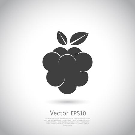 Raspberry icon silhouette on gray background.