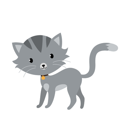 Gray cat in flat style isolated on white background Illustration