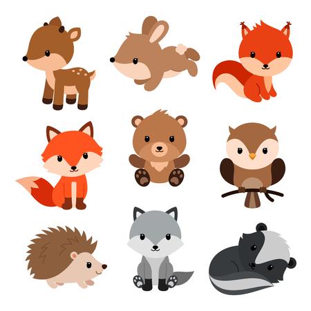 Conjunto de elementos de decoración y animales del bosque. Ilustración de vector aislado sobre fondo blanco.