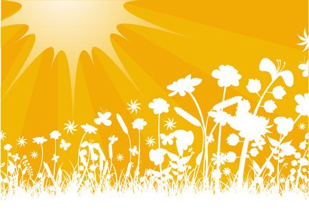 Vector illustration of Peaceful sunset with Silhouette of flowers and grass Vector