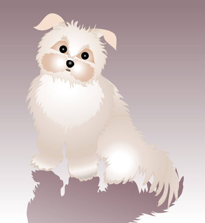 Vector illustration of cute, funky dog and his shadow. Vector