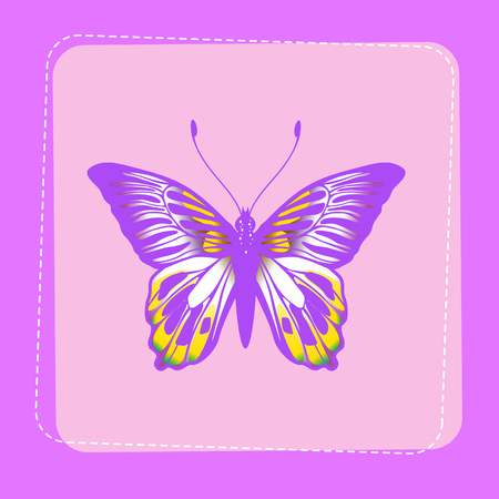 Vector Illustration of detailed Brightly coloured butterfly on funky violet background. Vector