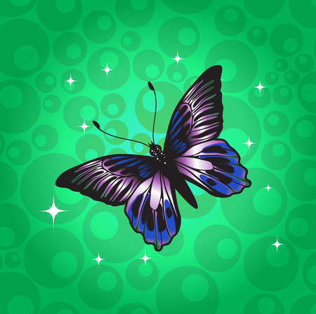 Vector Illustration of detailed Brightly coloured butterfly on the funky green background.